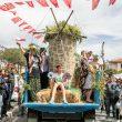 alacati_ot_festivali (6)